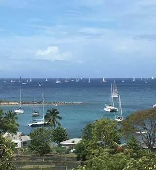 Antigua Sailing Week - Peters & May; the Official Shipping & Logistics Partner